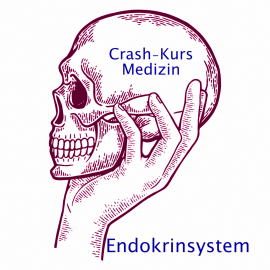 Crash Kurs Medizin: Endokrinsystem