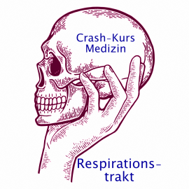 Crash Kurs Medizin: Respirationstrakt