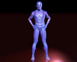 Das Faszientraining-Nacken-Schulter-Schmerzen    -DOWNLOAD -