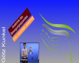 Anatomie des Bewegungsapparates