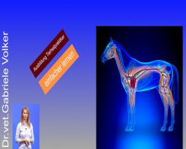Praxisorientierte Anatomie und Physiologie von Hund, Katze und Pferd  - Teil 1