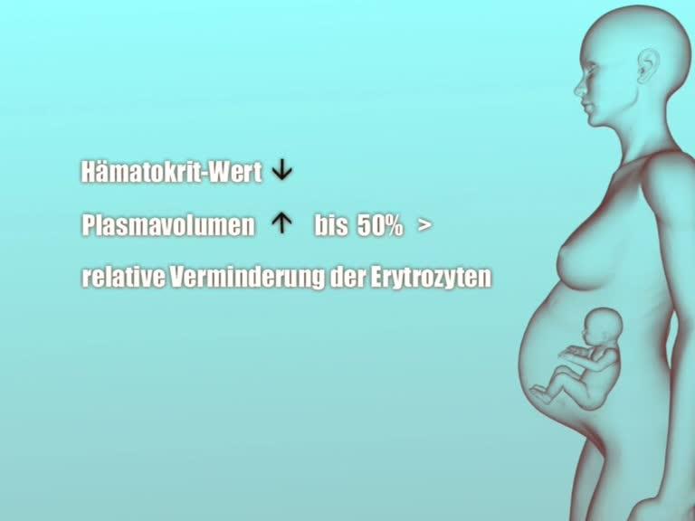 blutwerte schwangerschaft